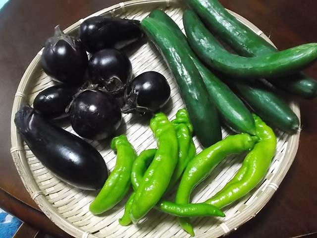 嫁農園の野菜で夕食献立_f0019498_21512085.jpg