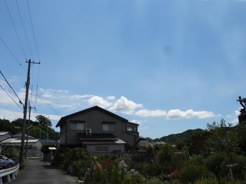 秋になれば 畑作業_c0108460_16453985.jpg