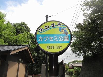 カワセミ公園(那珂川市)_a0093965_1658723.jpg
