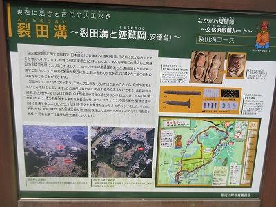 カワセミ公園(那珂川市)_a0093965_17194474.jpg