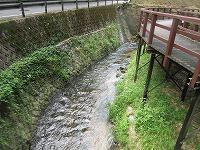 カワセミ公園(那珂川市)_a0093965_17233273.jpg