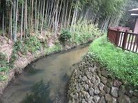 カワセミ公園(那珂川市)_a0093965_1724446.jpg