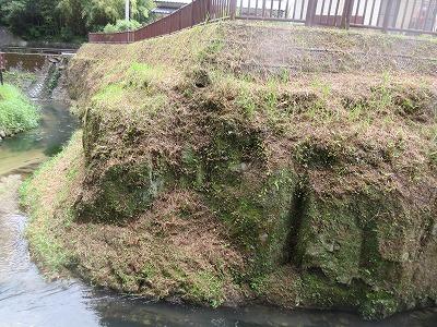 カワセミ公園(那珂川市)_a0093965_17413785.jpg