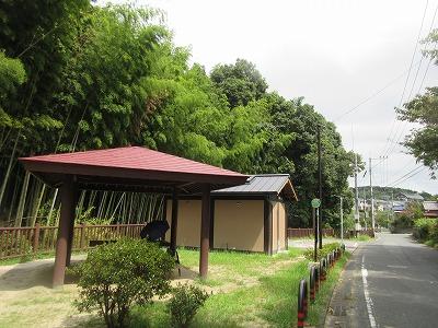 カワセミ公園(那珂川市)_a0093965_1765693.jpg