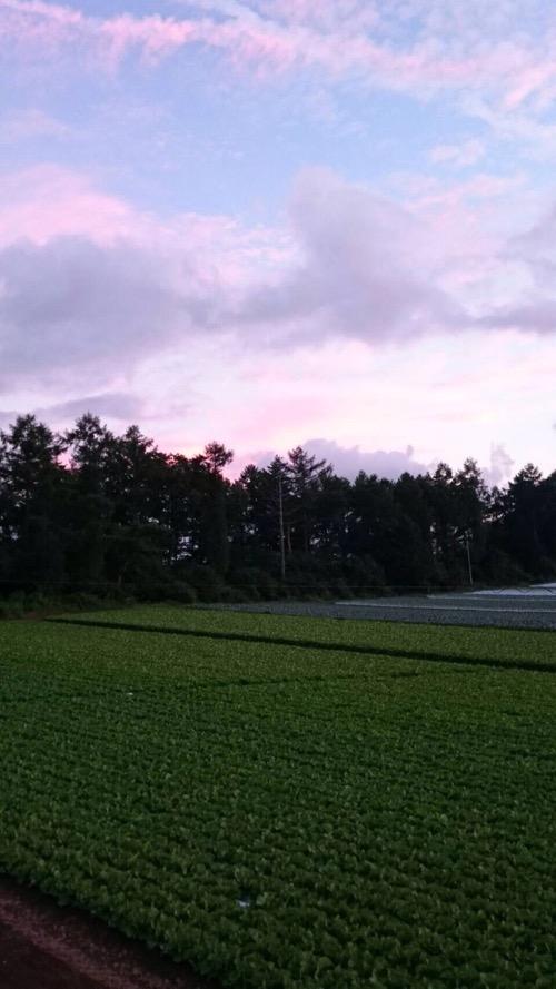 八ヶ岳の風景_f0232994_13543584.jpg