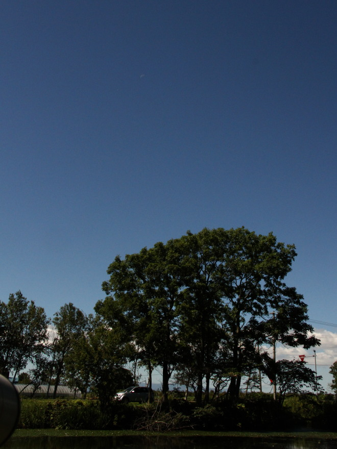 空は秋の空_c0360399_211423.jpg