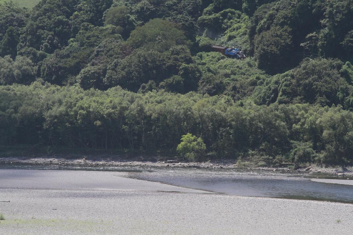 夏緑の中のトーマスくん - 2016年夏・大井川 -  _b0190710_1853930.jpg