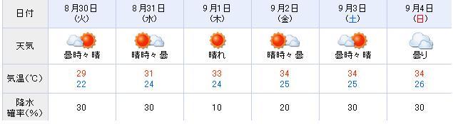 暑いのに秋真っ盛り?ですやん!_f0056935_1615280.jpg