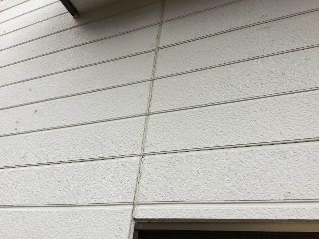 戸建て塗装の下見・見積り準備_f0031037_06323191.jpg