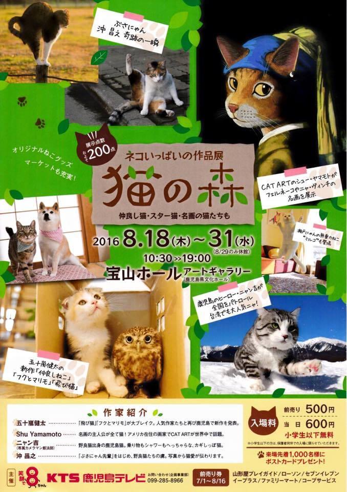 子猫の気配_a0126590_06303493.jpg
