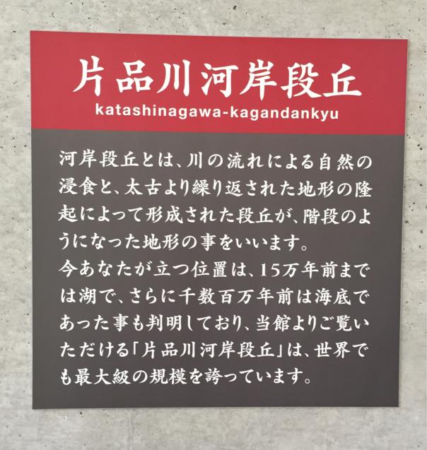f0144003_13050531.jpg