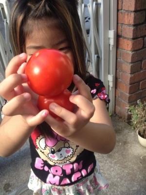 トマトの凛々子さん その④_e0012580_09110707.jpg