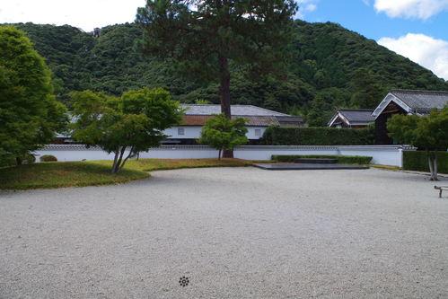 台風10号 福島沖通過 東北で250ミリの大雨の恐れも_c0192503_516688.jpg