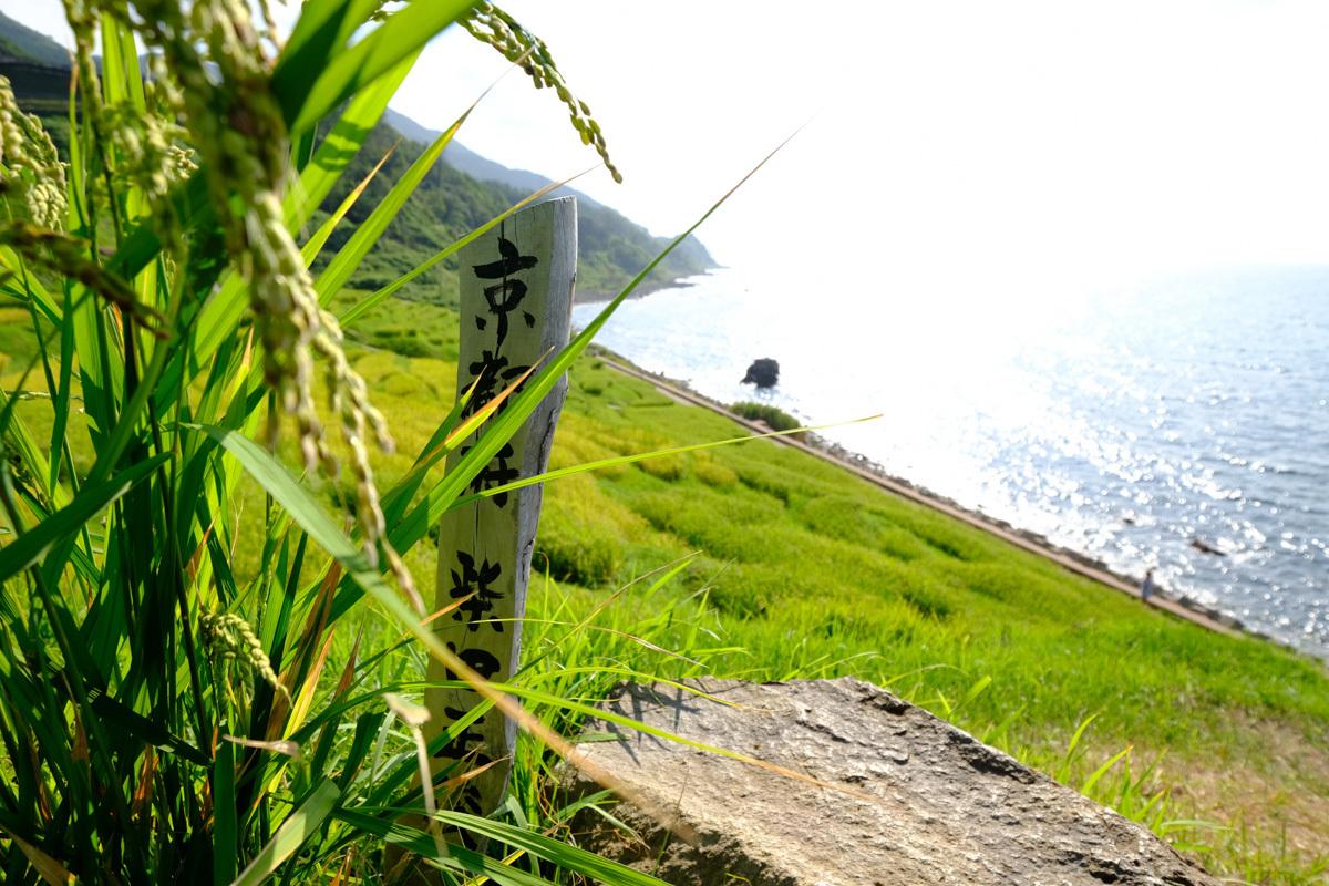 夏旅2016~Ⅱ_c0084666_22291967.jpg