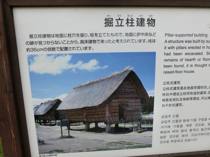 みんなで三内丸山遺跡へ・・_a0199979_16441480.jpg