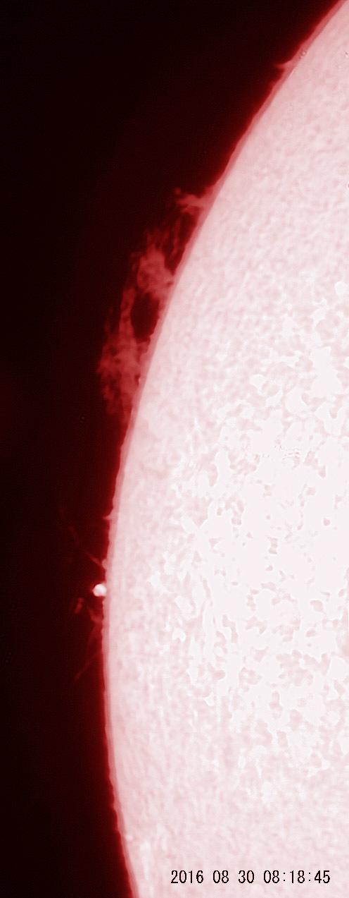 8月30日の太陽_e0174091_16181570.jpg