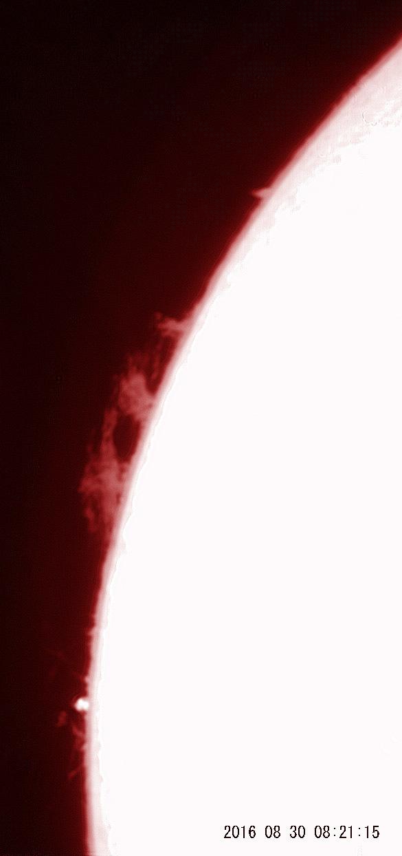 8月30日の太陽_e0174091_16182507.jpg