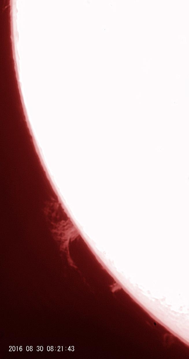 8月30日の太陽_e0174091_16190375.jpg