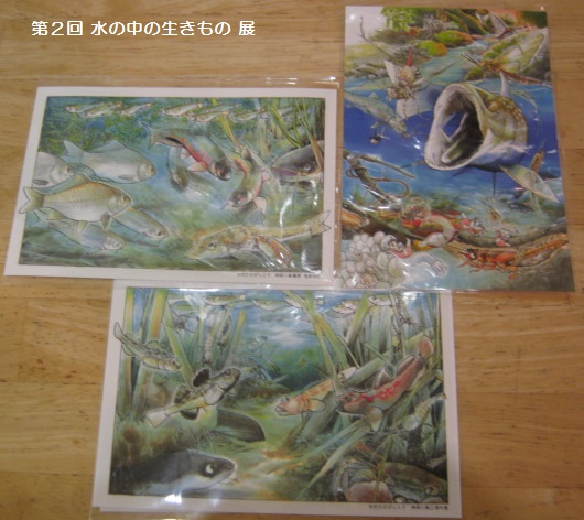 第2回 水の中の生きもの 展 その8_e0134502_151968.jpg