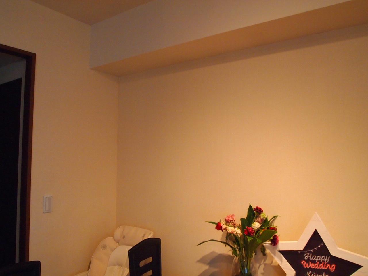 江東区の高層マンション収納工事を。。_a0214329_16343718.jpg