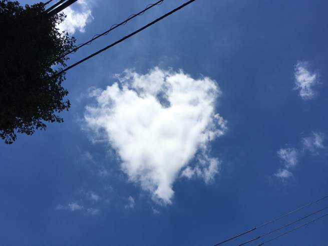 《空と雲》秋の気配、それから…虹のギフト*゚:+.。☆_b0298740_13381664.jpg