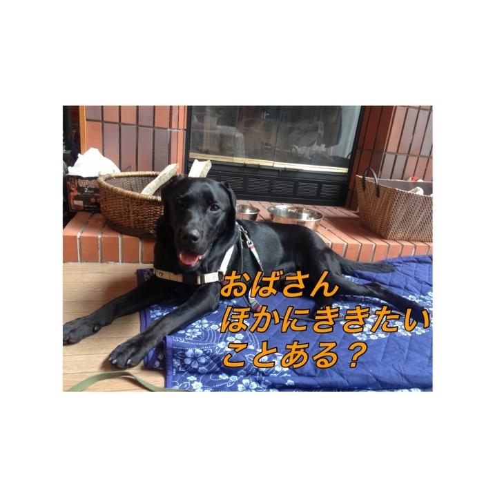 b0306466_01023711.jpg
