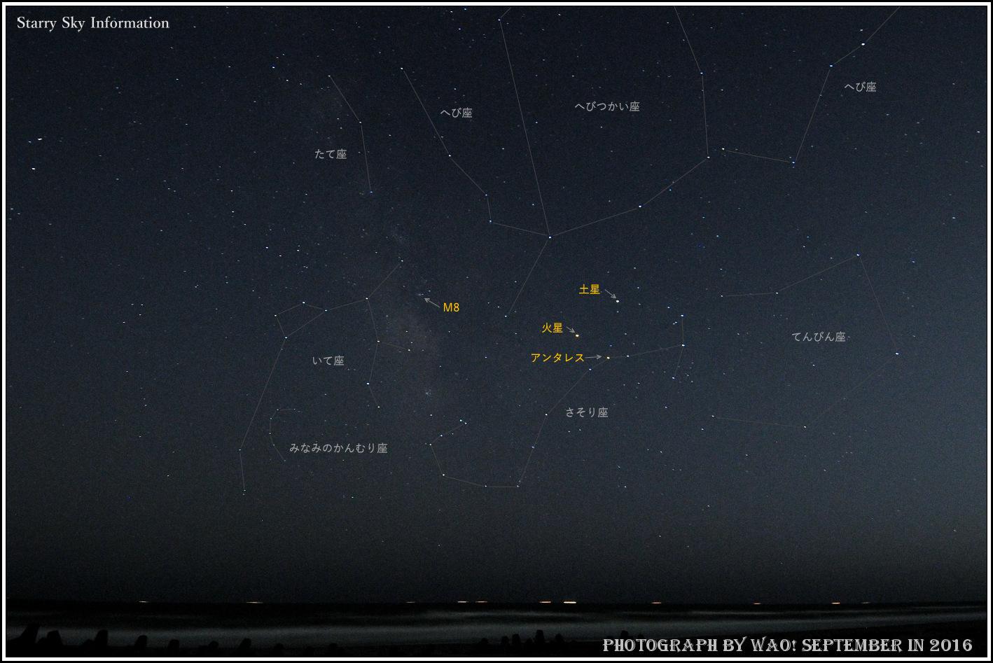 初秋の南天_c0198669_16401443.jpg