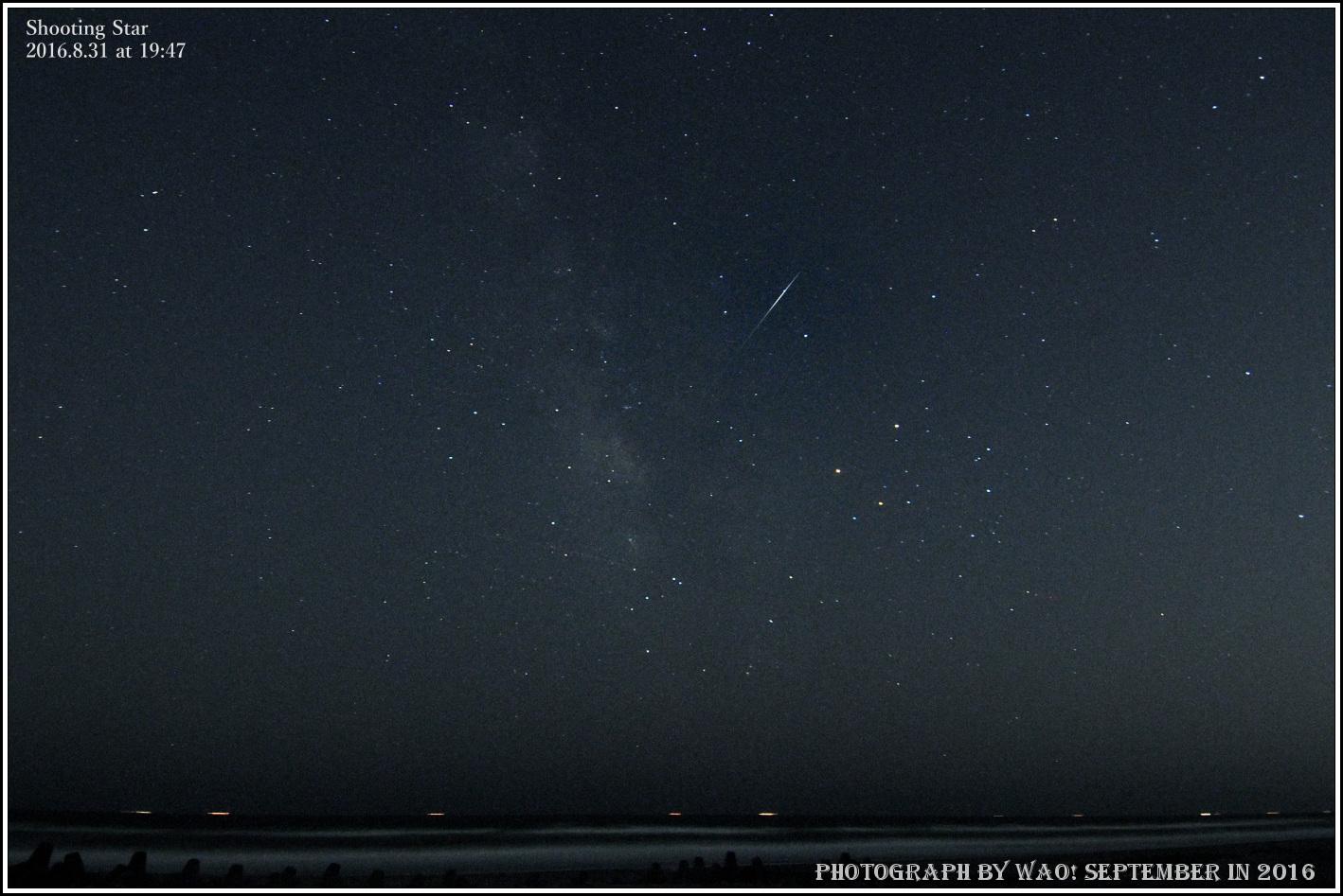 初秋の南天_c0198669_17240227.jpg