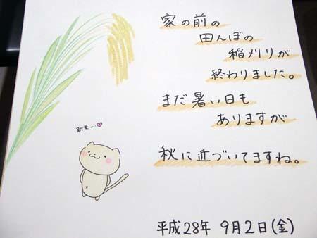 稲刈り_b0364195_10005969.jpg