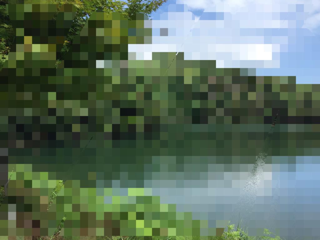 f0123714_22414386.jpg