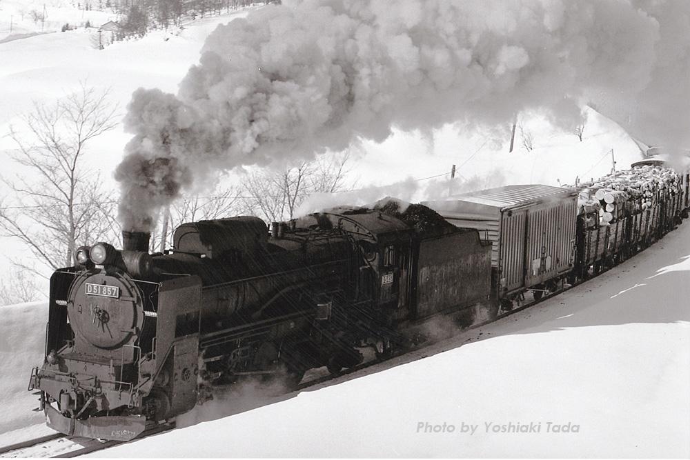 f0250322_1957156.jpg