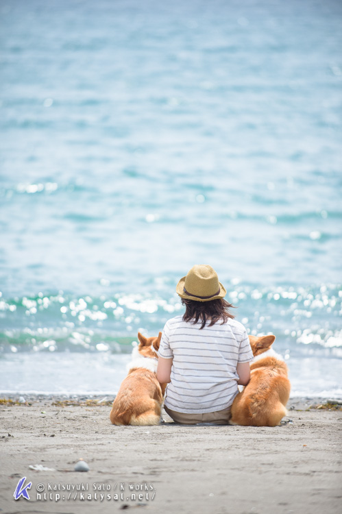 渚のムクくん・ジュンちゃん_d0102523_19155429.jpg