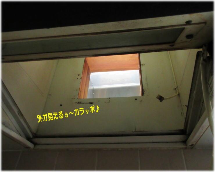 c0058727_13251511.jpg