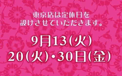 〜NEW COLOR!クルサードファルダ〜_b0142724_17005979.jpeg