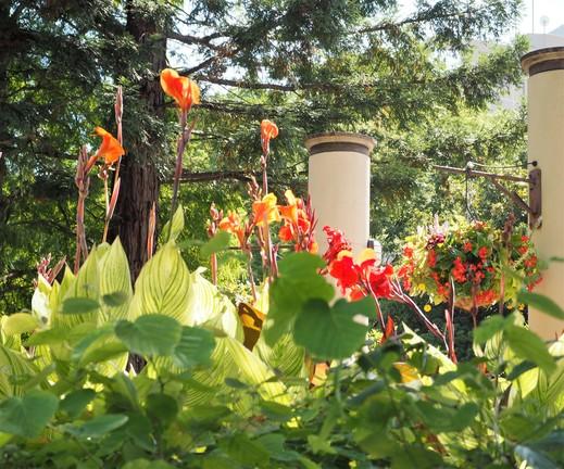 残暑の日の久屋大通庭園フラリエ_f0139333_21584851.jpg