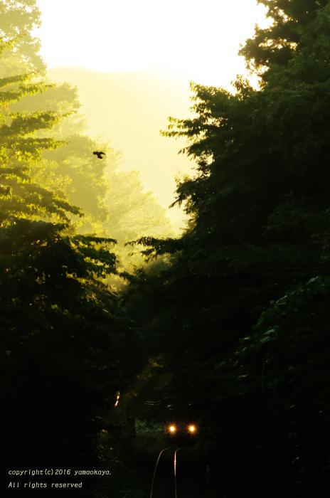 陽がまた昇る_d0309612_23591094.jpg