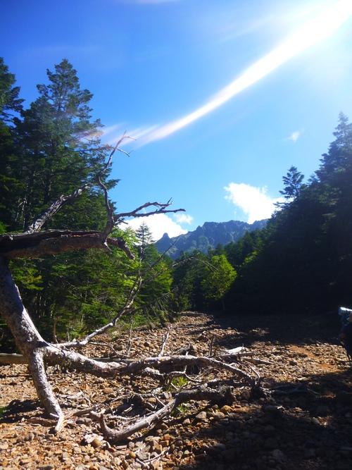 2016.9.1 八ヶ岳登山!_a0236914_11362235.jpg
