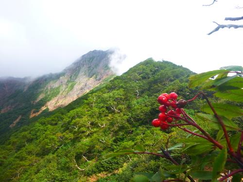 2016.9.1 八ヶ岳登山!_a0236914_1138481.jpg