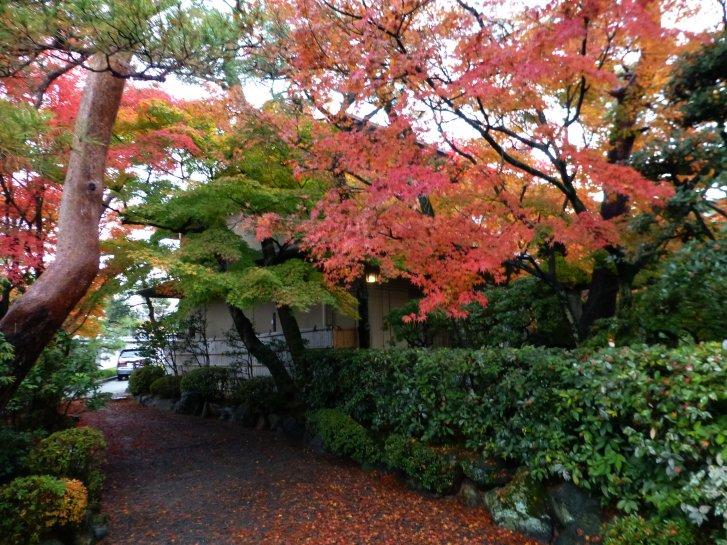 京都錦秋編(9):白河院庭園(14.11)_c0051620_6393214.jpg