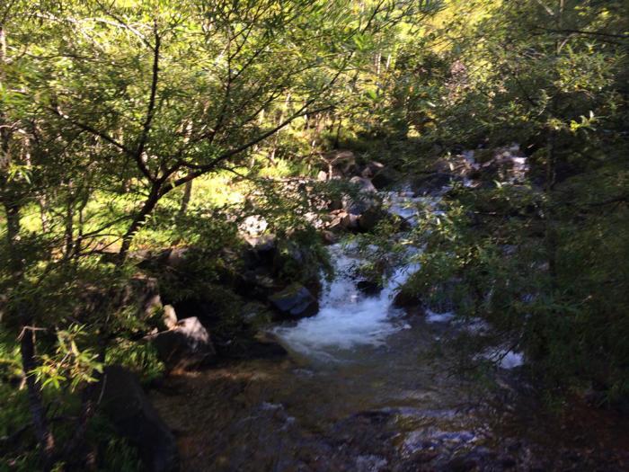 赤岳登山_e0233674_20584142.jpg