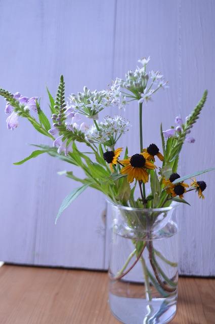 夏の花 秋の花_a0233896_16593058.jpg