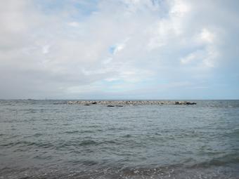 山泰荘の近くの海岸の今朝の様子_c0195909_13144336.jpg