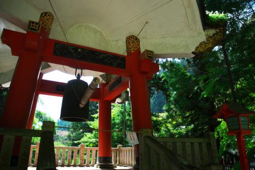 出流山(いずるさん)満願寺の秋海棠(シュウカイドウ)3_a0263109_10070736.jpg