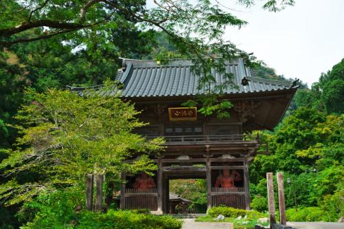 出流山(いずるさん)満願寺の秋海棠(シュウカイドウ)3_a0263109_10085948.jpg
