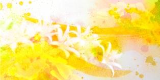 2016/11/2-7 伝統美と光のコラボ☆ワンネスアート 若生ひとみ展Ⅵ_e0091712_2355315.jpg