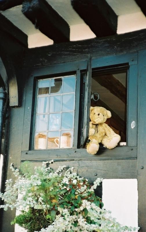 「ももさへづり チェルトナム村」の画像検索結果