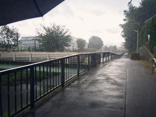 雨宿り、秋ゲートの下_e0071652_10501972.jpg