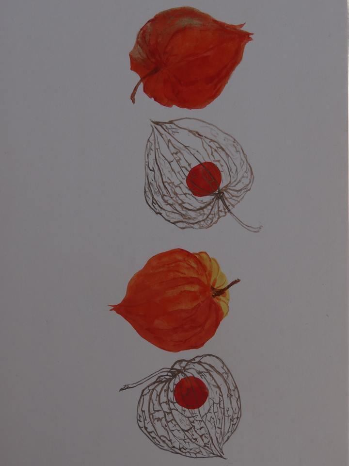 一茎の草を尊ぶ日本人の歌心ー日本画家 森谷明子さんー_d0237757_028140.jpg