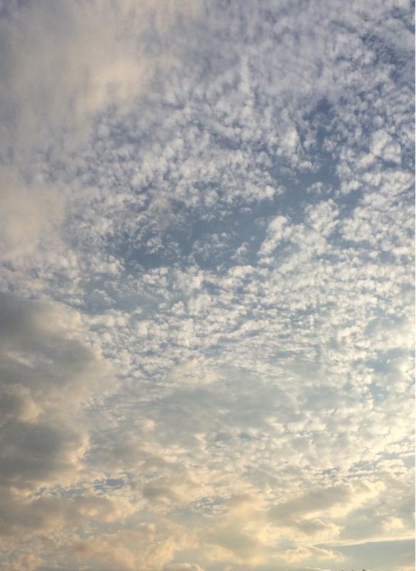 秋の空_f0155808_21461853.jpg