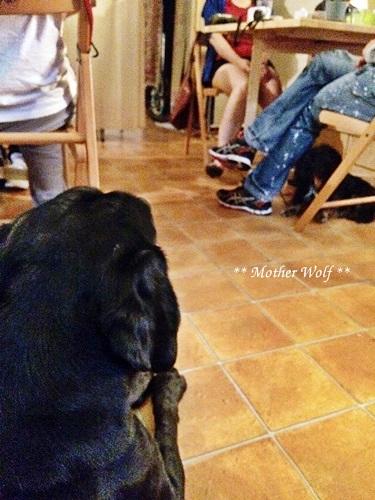 MWカフェ・レッスン♪ ~2016年8月~_e0191026_15313671.jpg